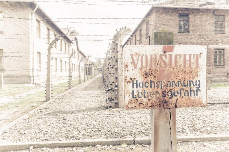 Auschwitz06