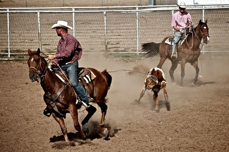 Rodeo a Vega