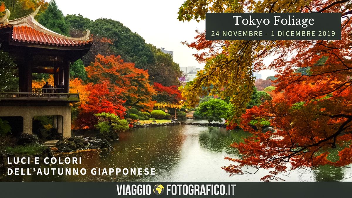 Tokyo Foliage